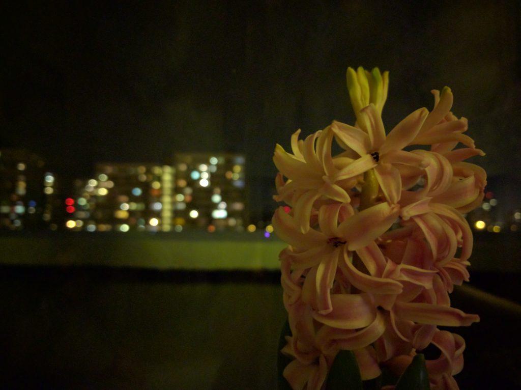 Zdjęcia nocne - Huawei Nexus 6P