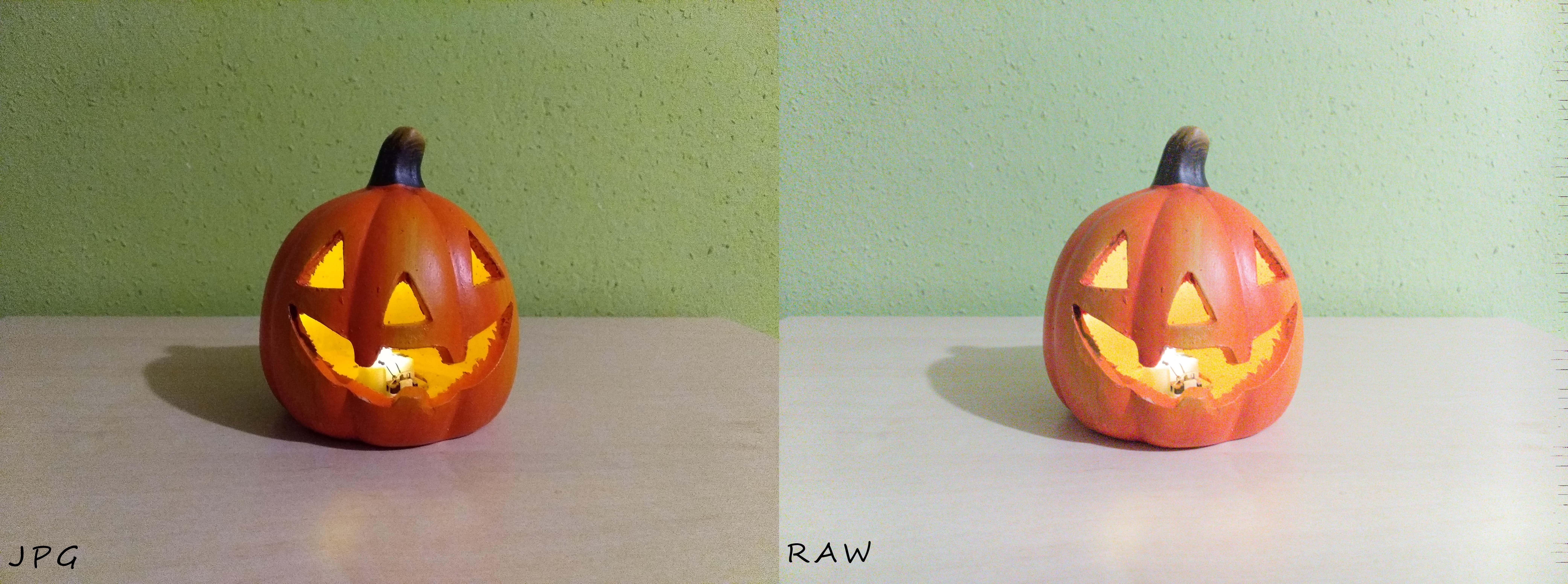RAW vs. JPG